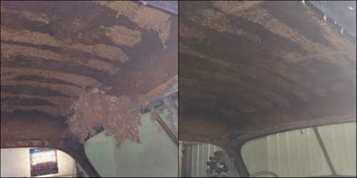 Before/ After roof cleanup